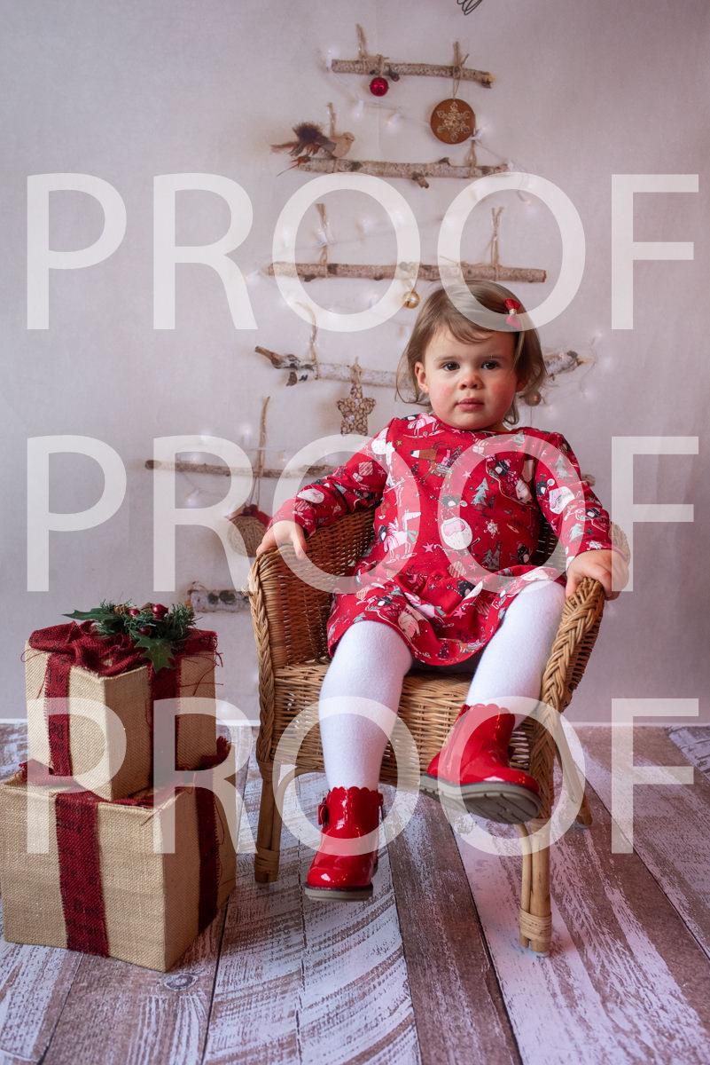 Hartbeeps Christmas-090
