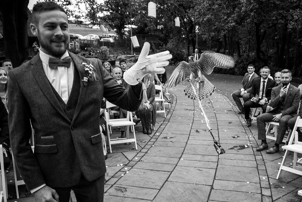 Kestrel ring bearer at Moddershall Oaks outdoor wedding ceremony