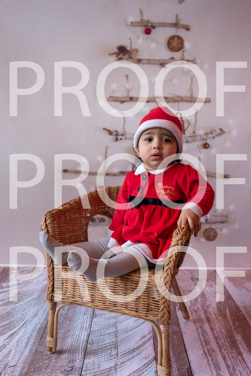 Hartbeeps Christmas-016