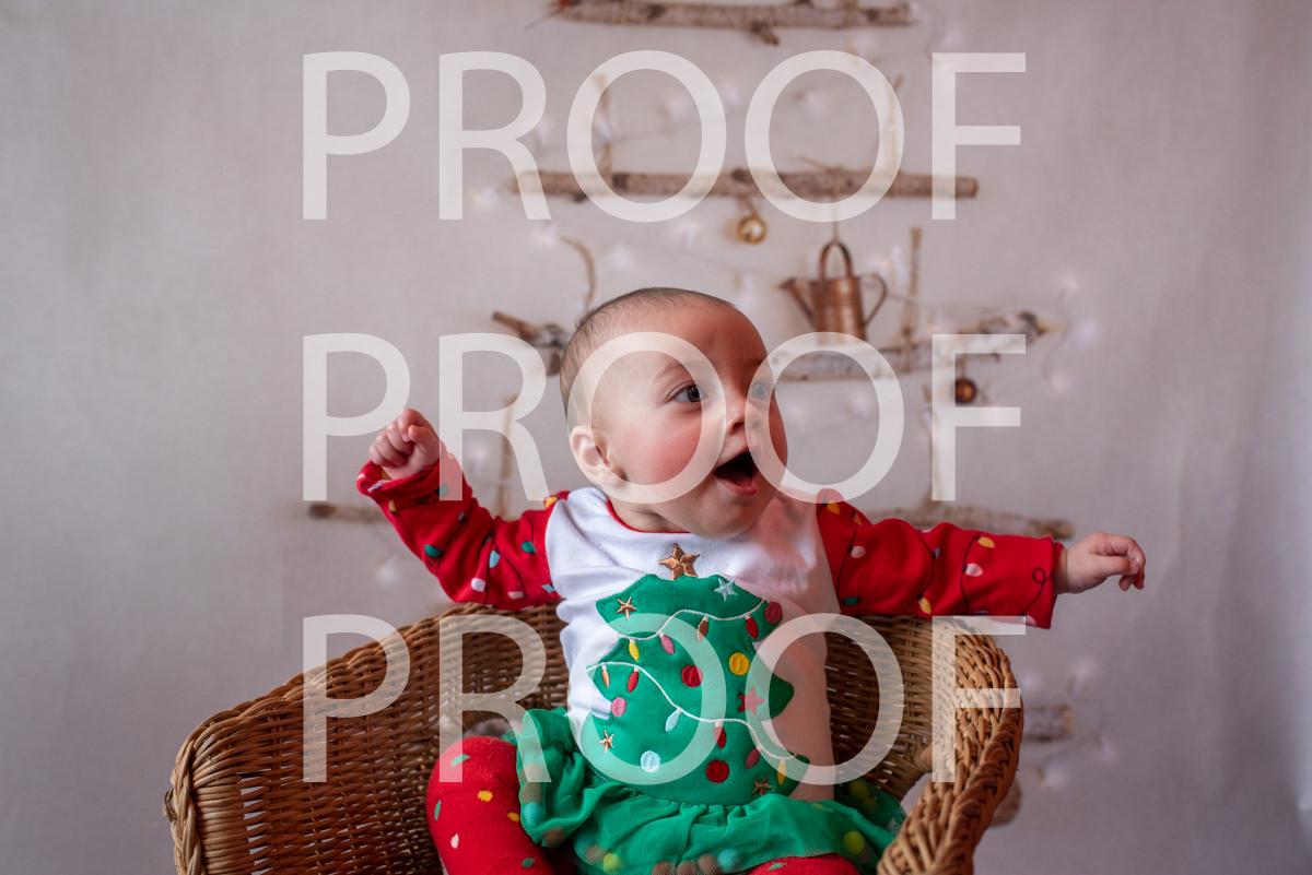 Hartbeeps Christmas-171
