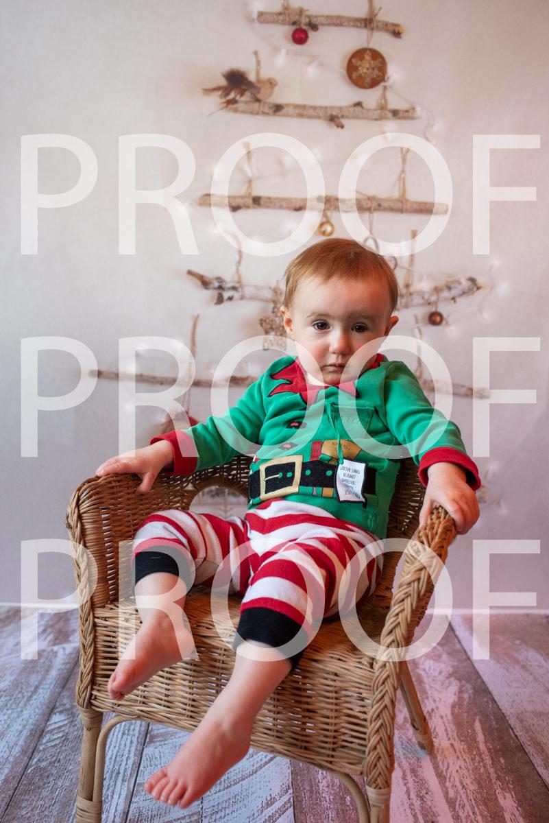 Hartbeeps Christmas-319