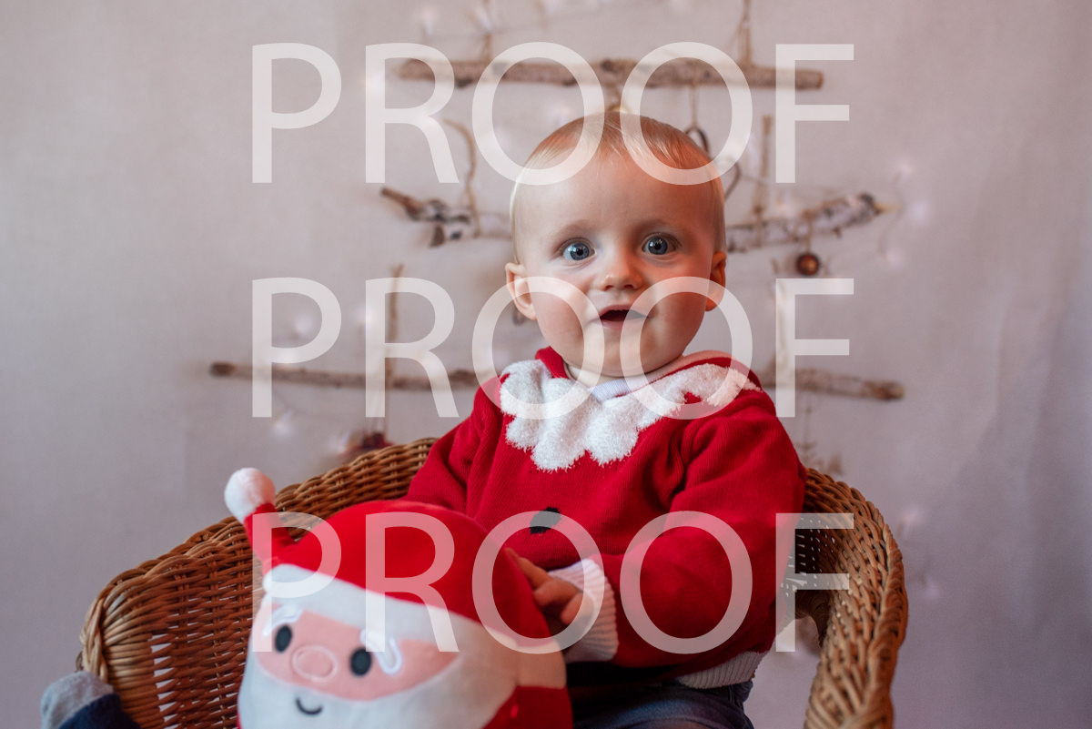 Hartbeeps Christmas-367