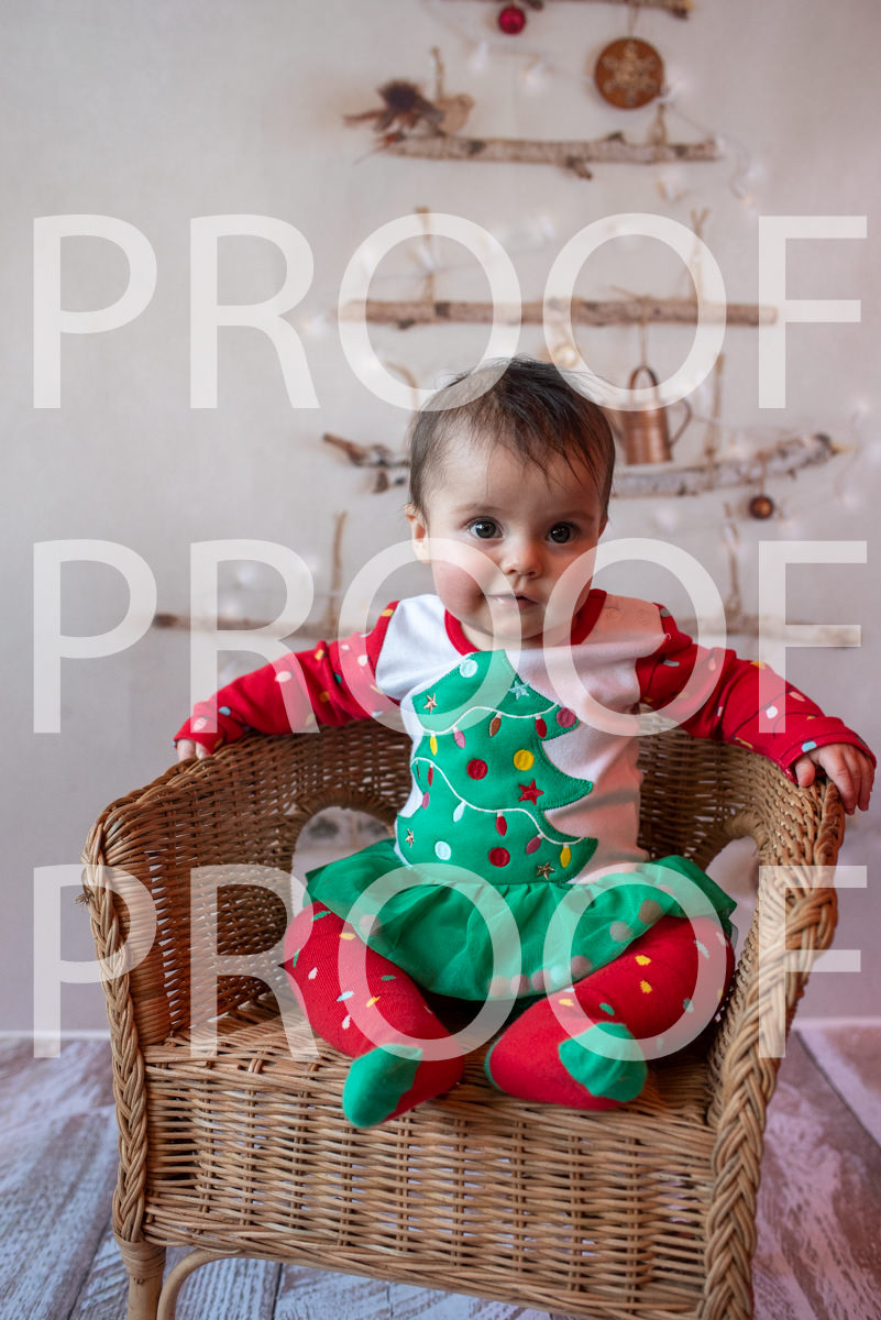 Hartbeeps Christmas-344