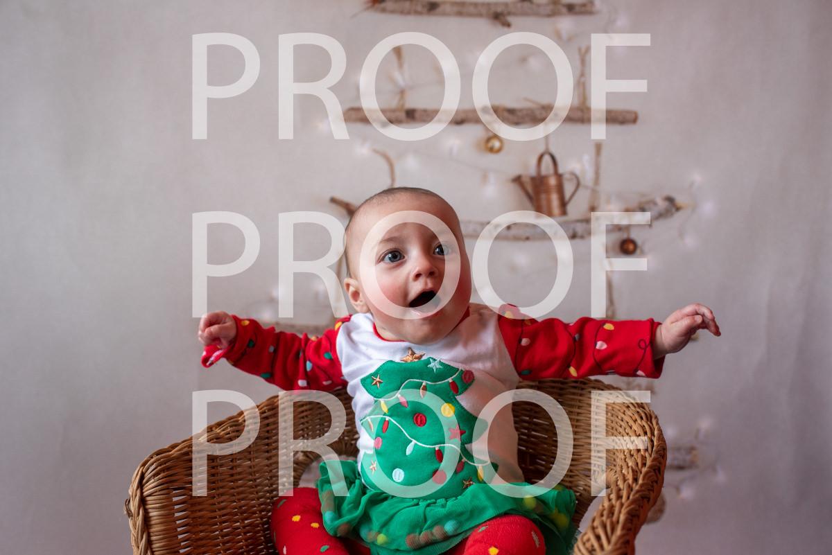 Hartbeeps Christmas-170