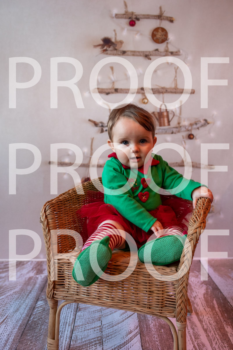 Hartbeeps Christmas-362