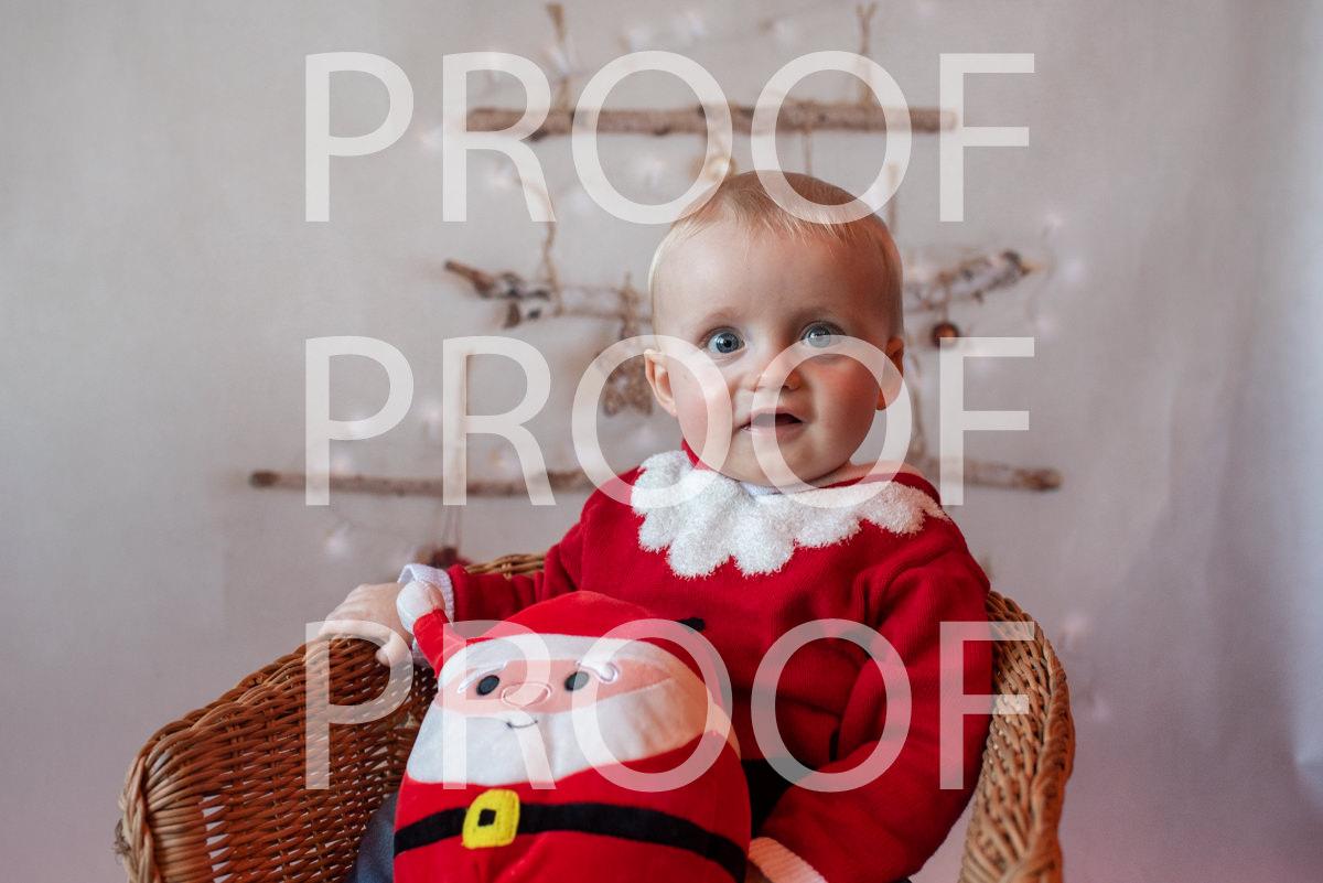 Hartbeeps Christmas-365