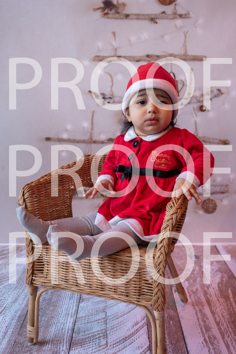 Hartbeeps Christmas-015
