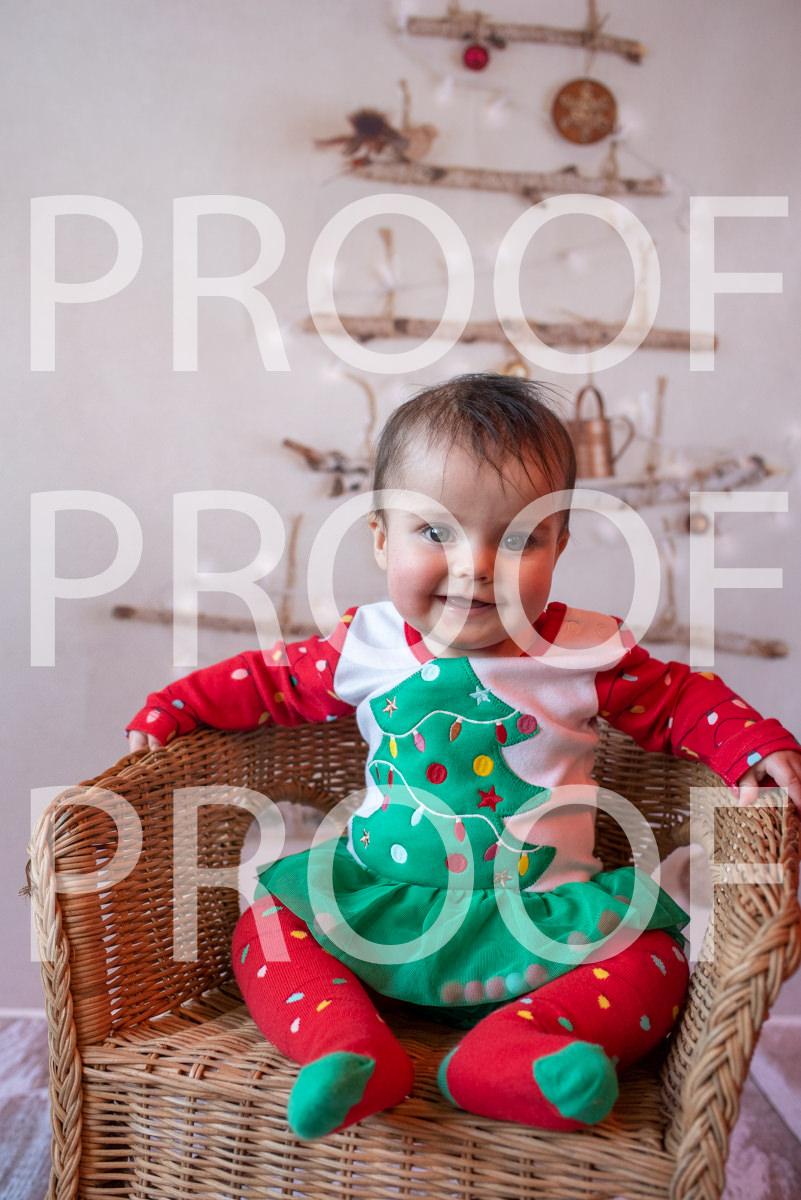 Hartbeeps Christmas-347
