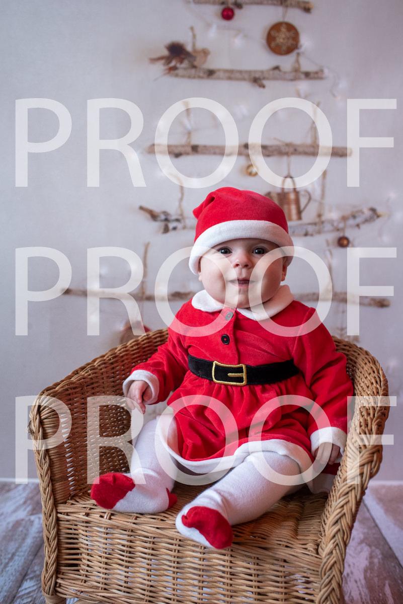 Hartbeeps Christmas-230