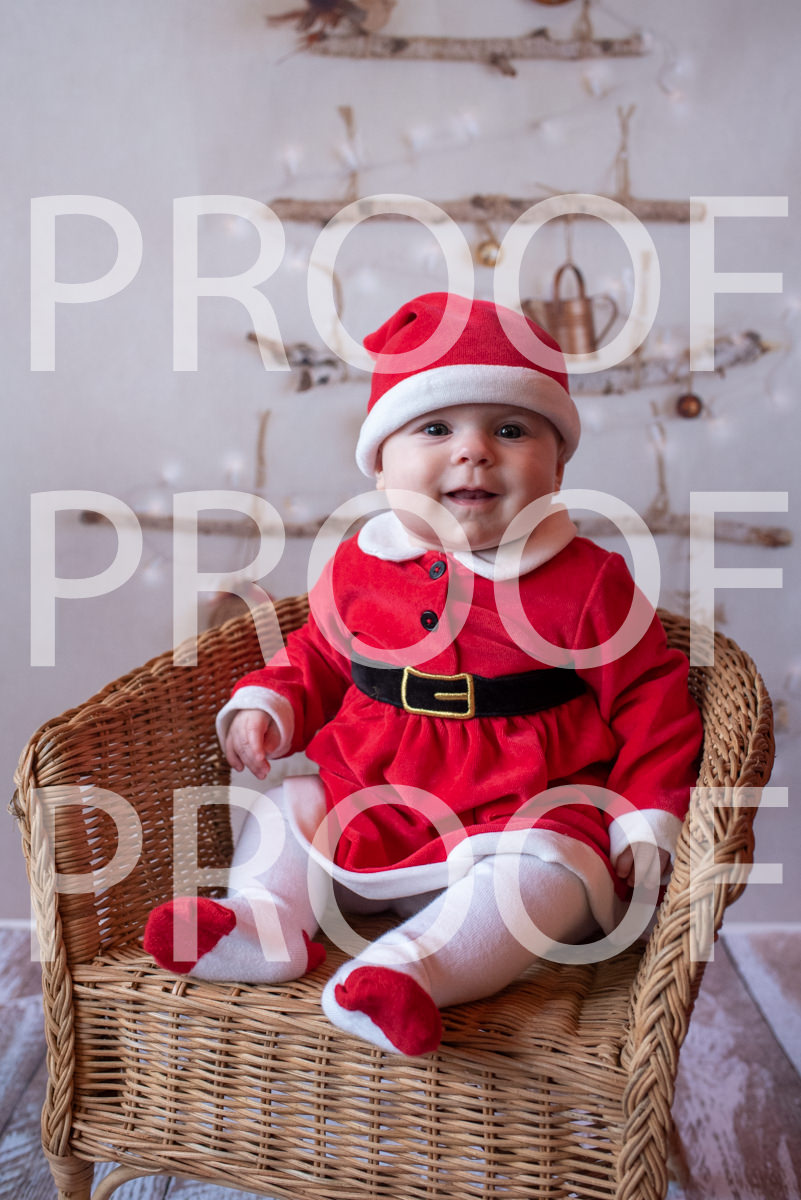 Hartbeeps Christmas-231