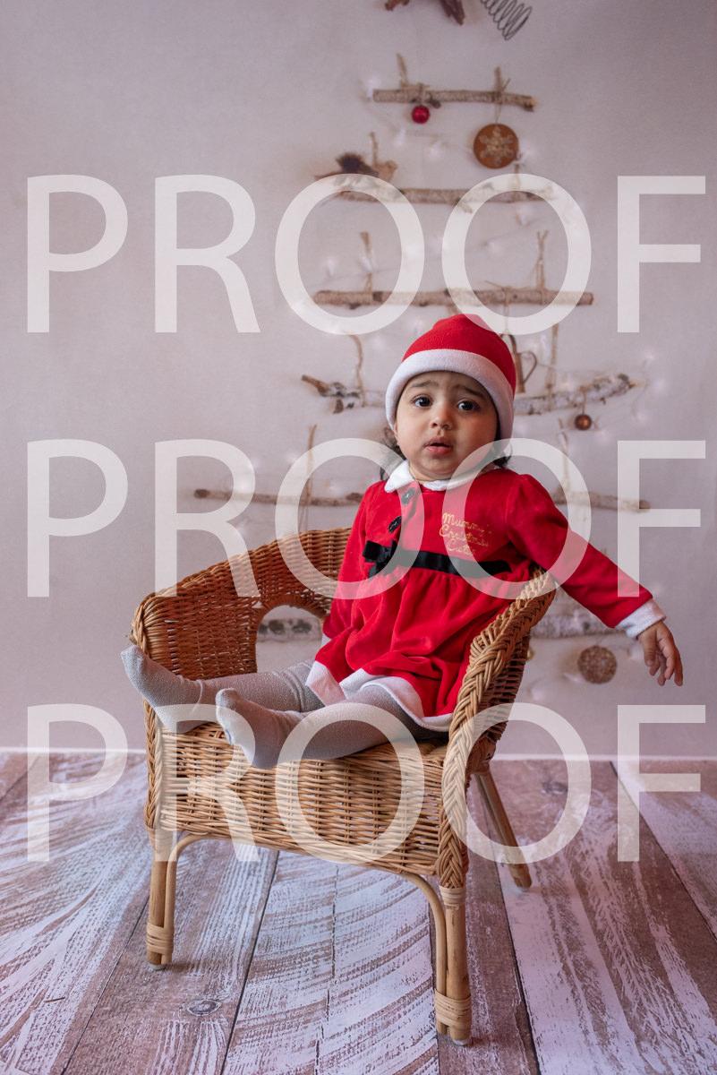 Hartbeeps Christmas-018