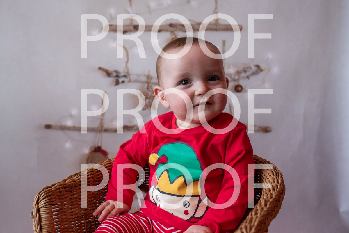 Hartbeeps Christmas-211