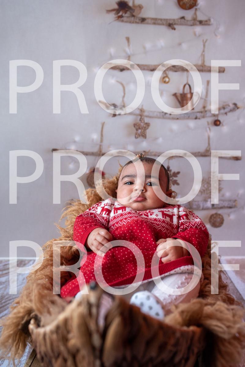 Hartbeeps Christmas-247