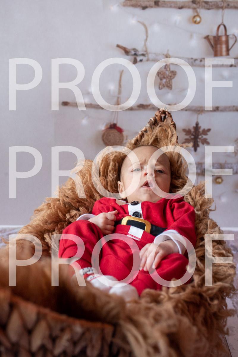 Hartbeeps Christmas-294