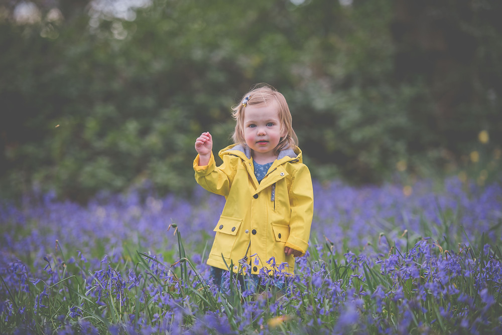 Bluebell photoshoot in Shropshire