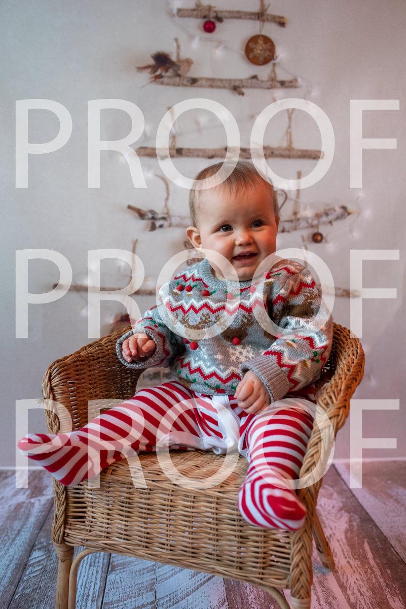 Hartbeeps Christmas-430