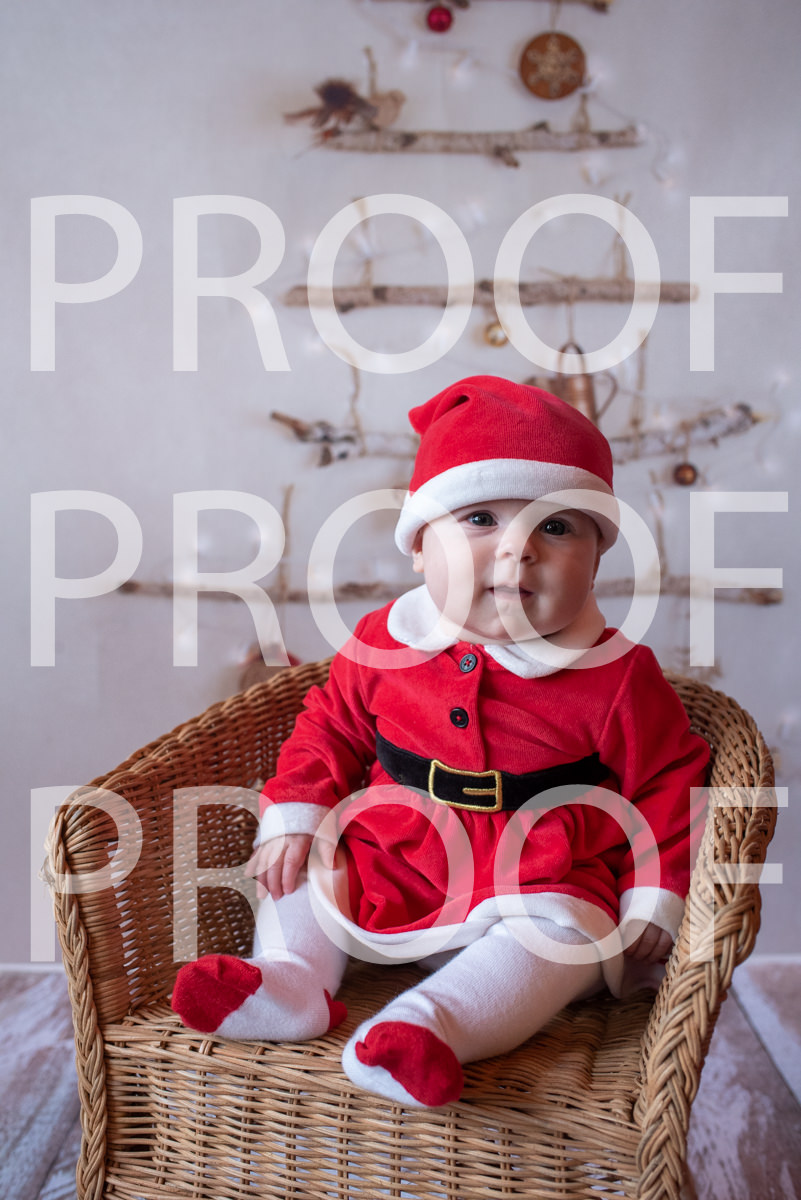 Hartbeeps Christmas-232