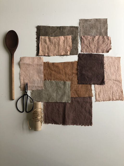 Natural dyes workshop.jpeg