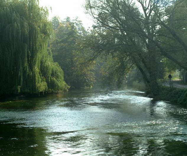 river-test-romsey.jpg