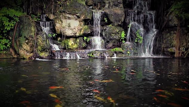 waterfalll 1.jpg