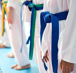 Judo%20Belts_edited.jpg
