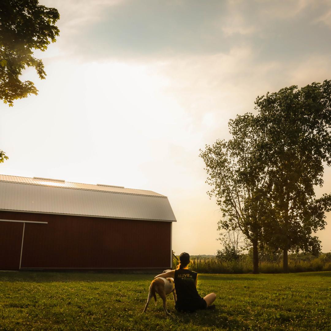 The Big Barn Sunset