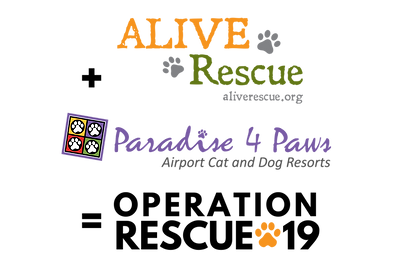 Operation RESCUE-19_All Logos_Blk.png