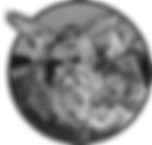 Wolds Wildlife Park Logo Mono Small.png