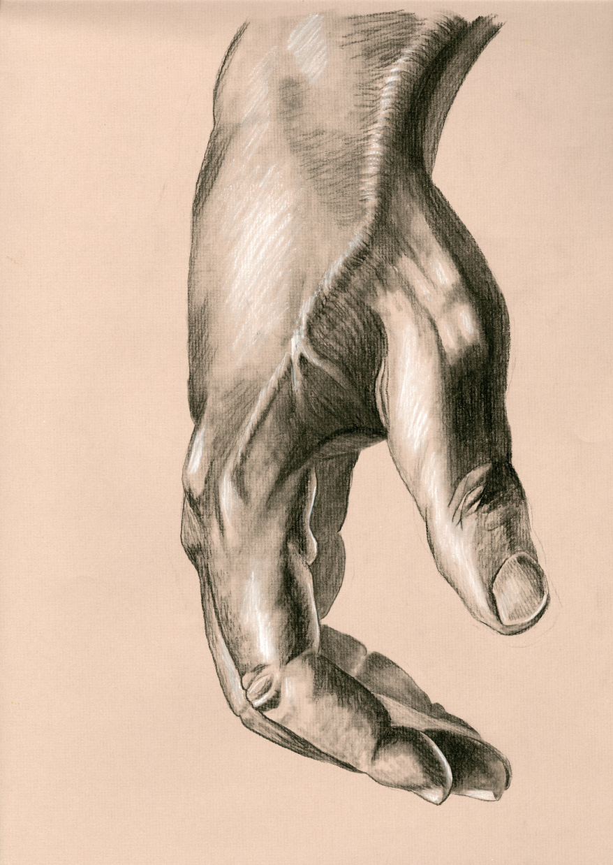 charcoal hand study assignment