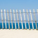dune fence.jpeg