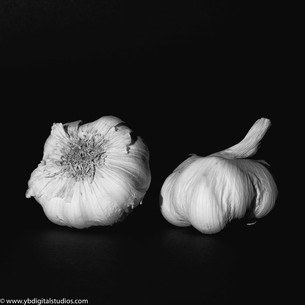 Modern Black and White Photography