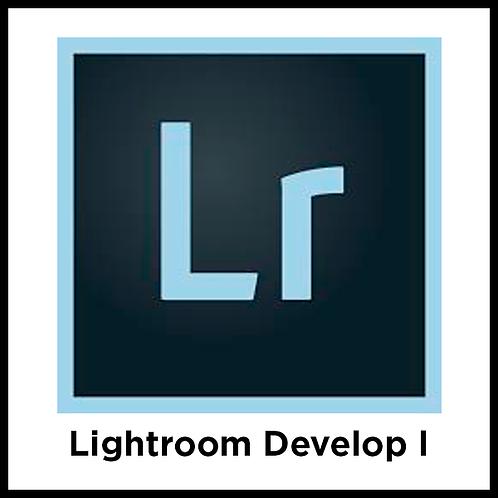 Lightroom Develop l