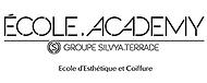Ecole Academy Grenoble
