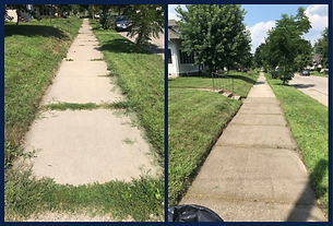 Weed Treatment in Minneapolis, Minnesota