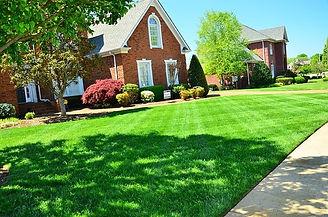 fertilize lawn.jpg
