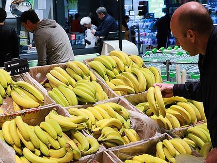 Эквадорские бананы сгорели в лаве вулкана