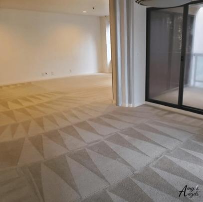 heriberto_carpet_cleaning.png