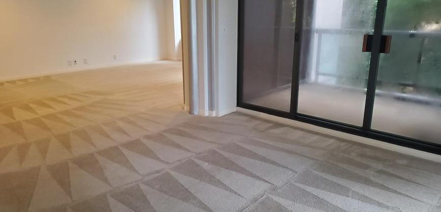 carpet_cleanin.jpeg