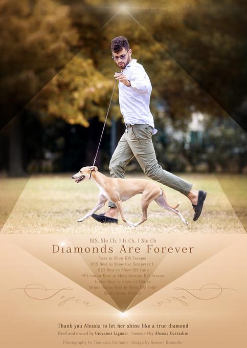AD-Diamonds are forever.jpg