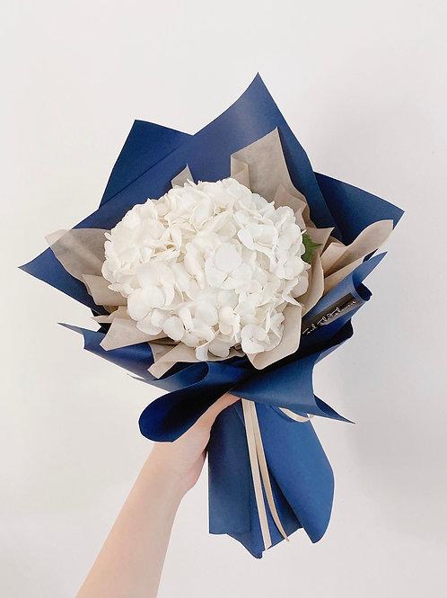 Beautiful White