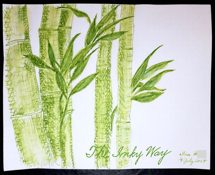 Sketch - Bamboo - Pilot Iroshizuku Chiku-rin