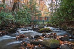 Stream at Sylvania Lodge