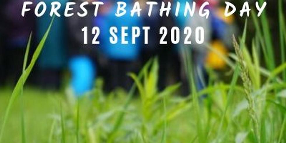 International Forest Bathing Day Walk