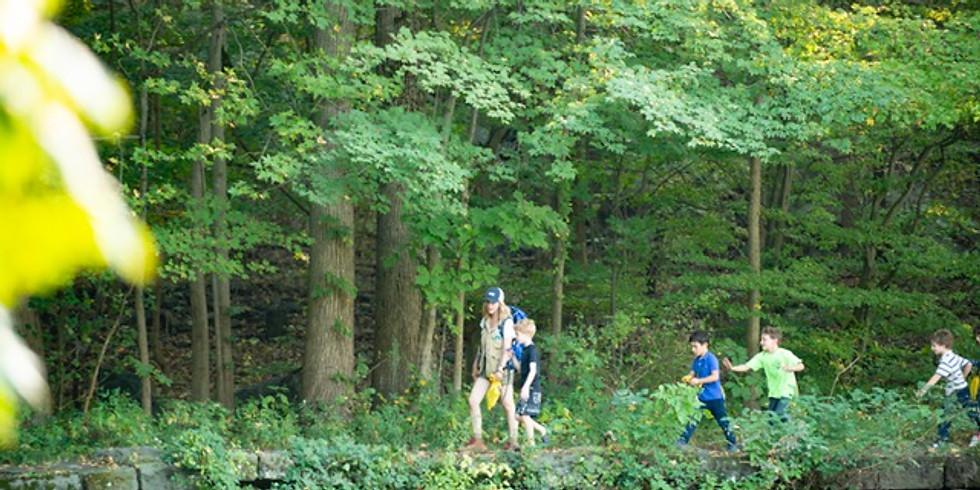 Family Mindful Nature Walk
