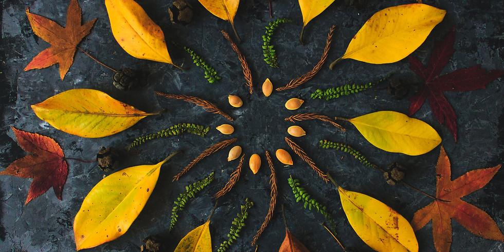 Nature Mandala Making Workshop