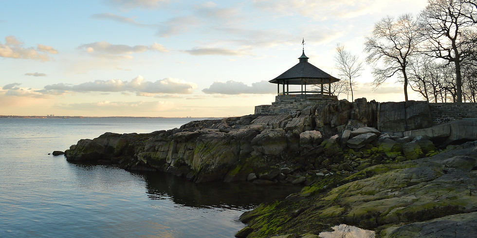 Larchmont Walks: Mindful Nature Walk Earth Day Event