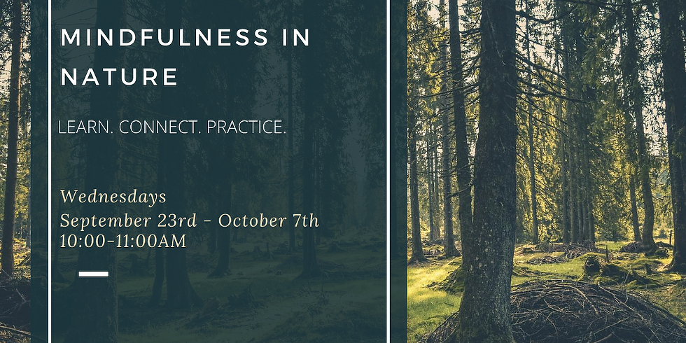 Mindfulness In Nature (Online Class Series)
