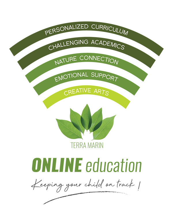 TM remote learning logo wifi V2-06.png