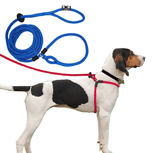 Harness Lead