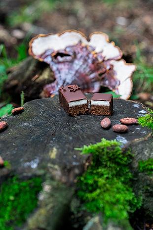 Myshrooms MINT Brownuffles 34.jpg